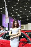 2012太原车展车模