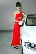 http://db.auto.sohu.com/photo/