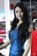 2013第十一届温州国际车展美女车模连连看