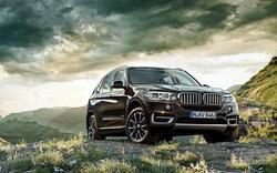全新BMW X5上市 专访中顺津宝总经理杨悦