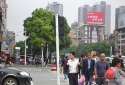 衡阳交通乱象:行人/电动车辆频频闯红灯