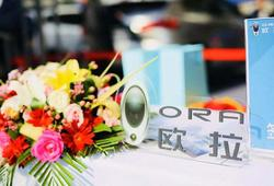 欧拉R1七城品鉴会首站天津站获351台订单