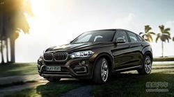 天津中顺津宝 BMW X6将更少油耗更好能效