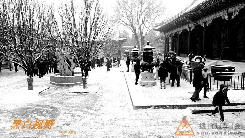 雪天黑白风景图片