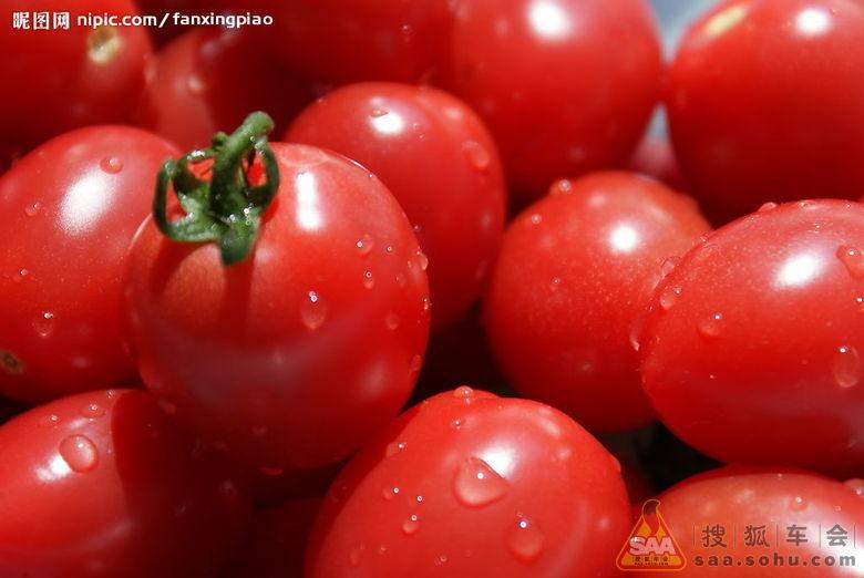 冬季吃什么蔬菜减肥最快_冬天吃什么蔬菜可以瘦身3