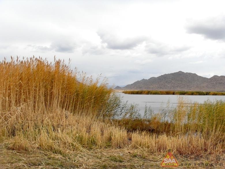 苏里湖座落于新疆阿勒泰地区富蕴县境内,距县城约 25km,又称野鸭湖.